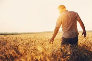 agriculteurs-:-une-utilisation-exceptionnelle-de-la-deduction-pour-aleas-(dpa)
